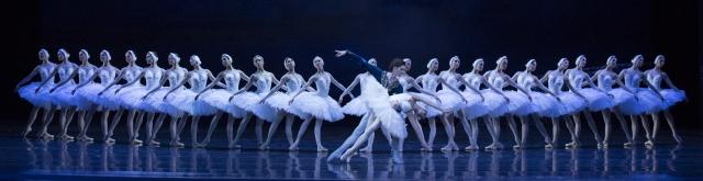 Le Lac des Cygnes présenté par Les Grands Ballets